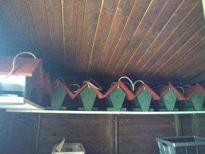 Holz-Vogelhäuser in der Farbkombination rot und grün